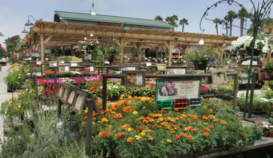 Choosing a Fence from a Garden Center Outlet